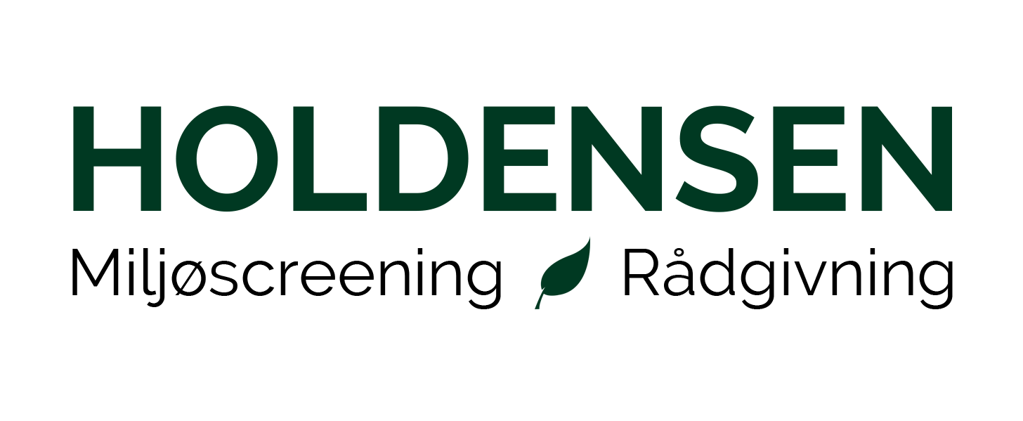 HOLDENSEN Logo